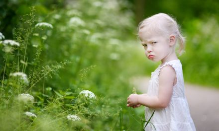 Surviving Tantrums